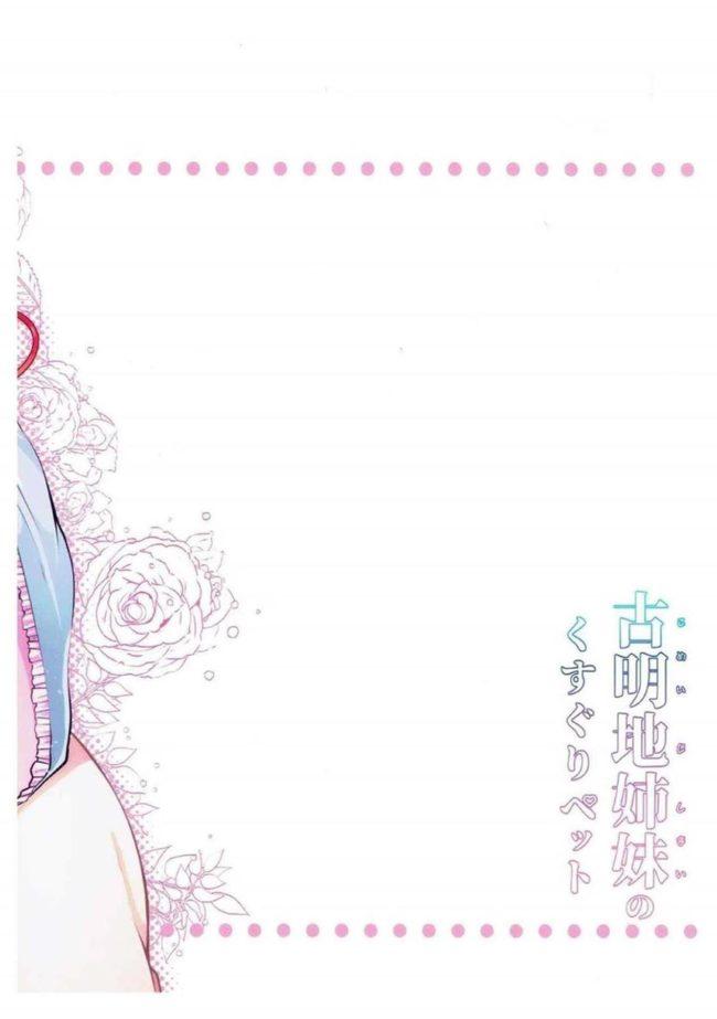 【エロ同人誌 東方】古明地姉妹のくすぐりペット【Berry!16 エロ漫画】 (27)