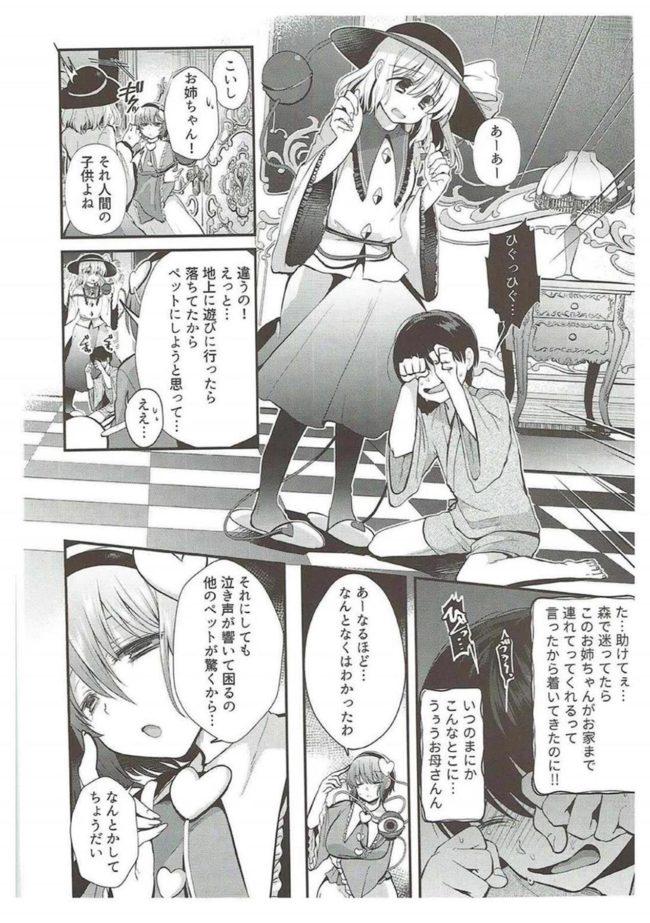【エロ同人誌 東方】古明地姉妹のくすぐりペット【Berry!16 エロ漫画】 (3)