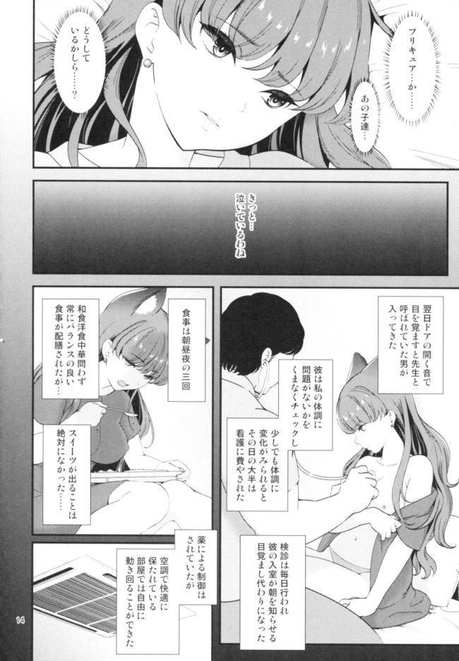【エロ同人誌 プリキュア】絶対服従【無料 エロ漫画】 (14)
